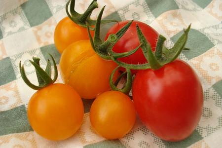 プランタートマト