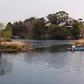 写真: 浮島