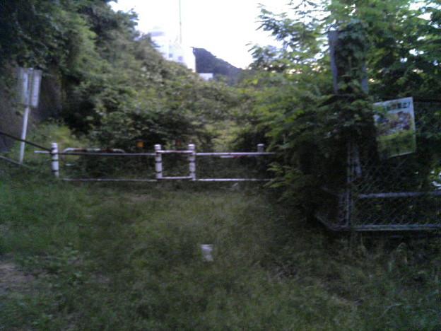 多摩川サイクリングロード右岸行き止まり