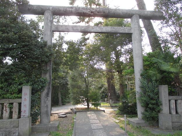 忍 諏訪神社・東照宮(行田市)