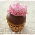 桜のチョコカップケーキ6