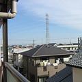 Photos: tatami 033