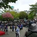 Photos: 140429-3 たかさきスプリングフェスティバル