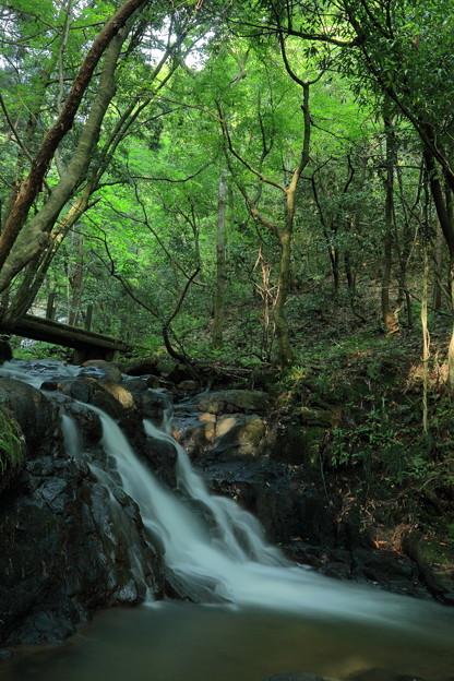 七つ滝(3)