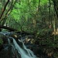 写真: 七つ滝(3)