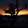 写真: 浜名湖の夕日
