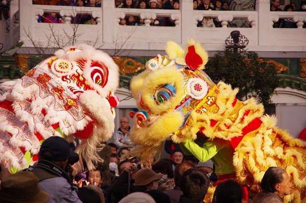 この日最初の中国獅子舞?ステージを降りて・・20140202