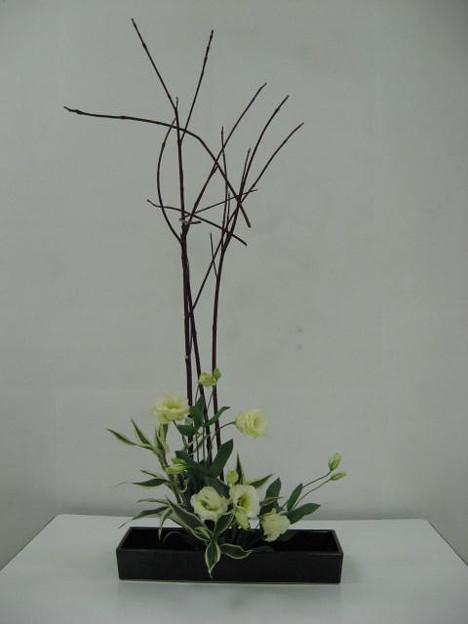 サンゴ樹、トルコキキョウ、ドラセナ