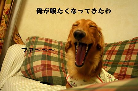 眠れない 7