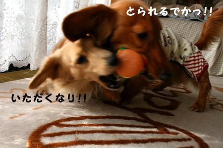 東矢くんと摩耶さん11