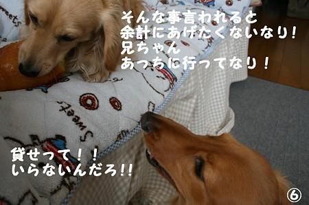 おNEWおもちゃ 6