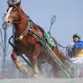 写真: ゴールドランサと西将太騎手