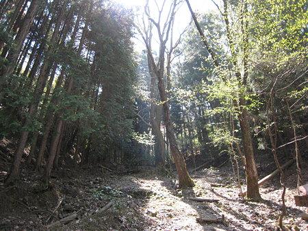 神ノ倉山登山道