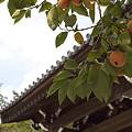 写真: 妙法寺 06