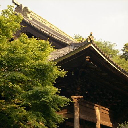 妙本寺 ブロニカ編 01