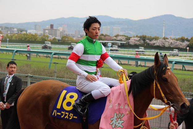 写真: 口取り、表彰式に向かうハープスターと川田さん